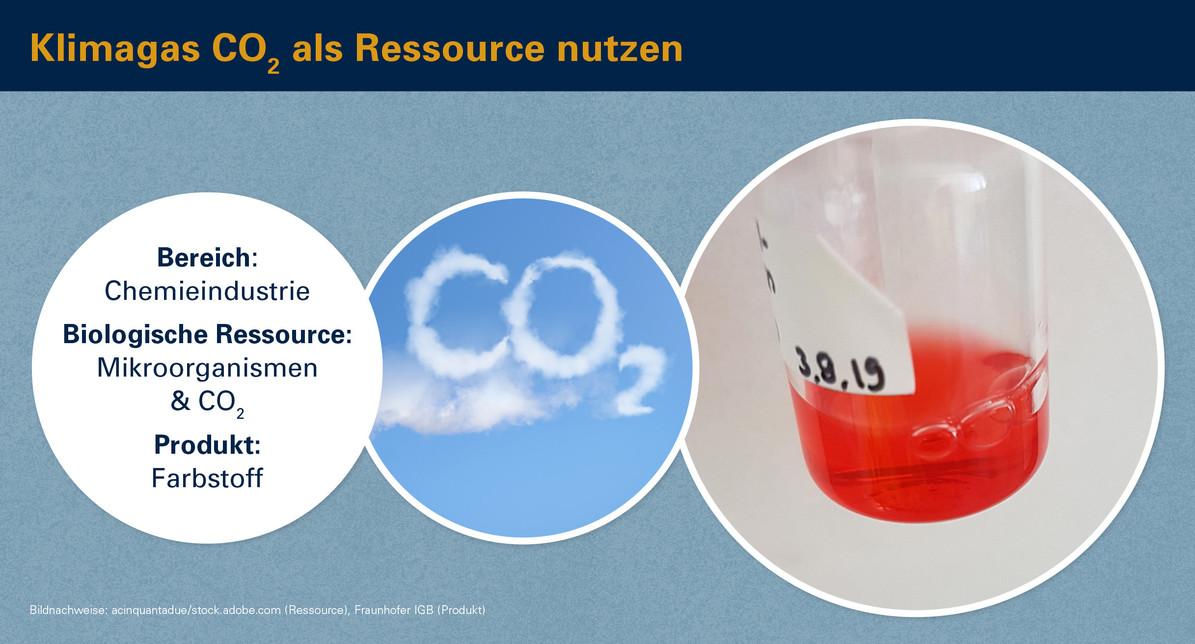 Klimagas CO2 als Rohstoff nutzen